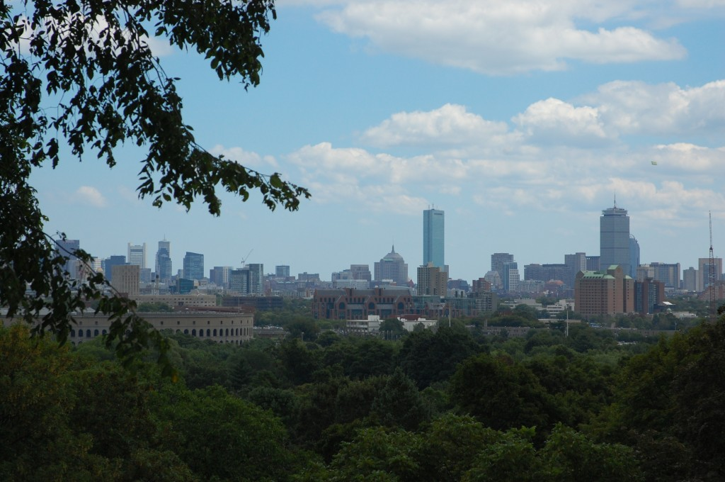 Boston from Washington Tower at Mt. Auburn Cemetery