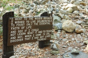 Honoring Thoreau at Walden