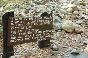 Honoring Thoreau at Walden