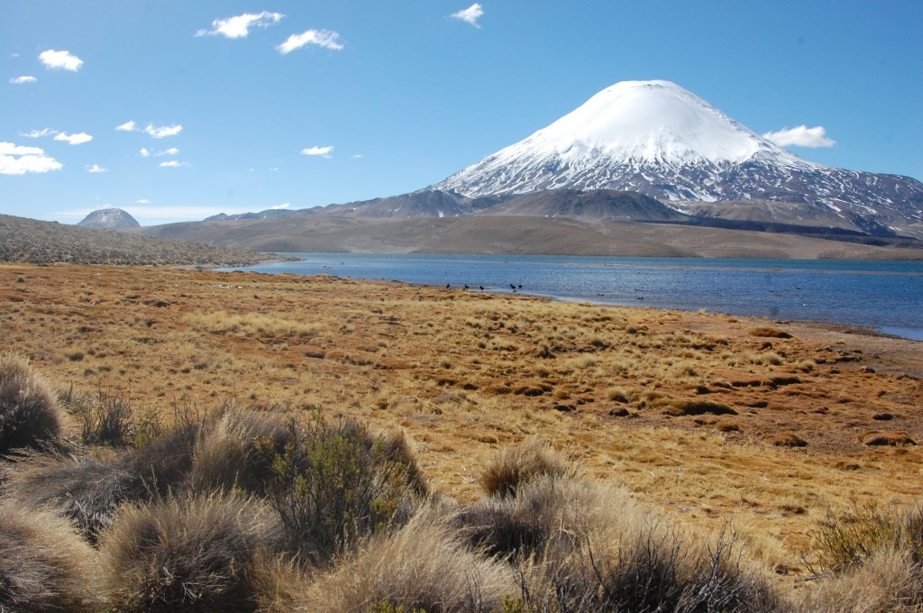 Laguna Chungará and Volcán Parinacota, Chile