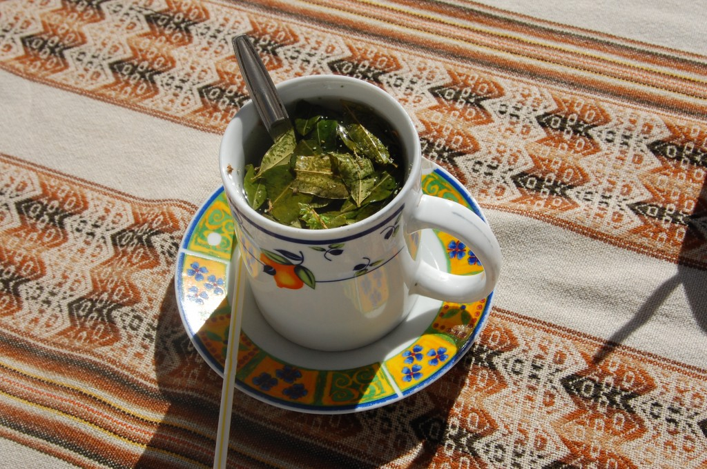 Coca and Chachacoma Tea, Chile